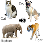 Download Animal sounds for kids APK