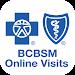 Download BCBSM Online Visits APK
