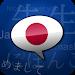 Download Learn Japanese Phrasebook APK