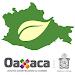 Download Mapa Oaxaca APK